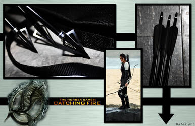 Hunger Games Catching Fire Arena Arrows by Archer-AMS