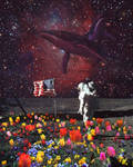 impossible astronaut by Paups