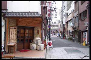 Shiba-koen Street Scene by IvanChristian