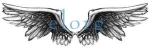 Wings by elorg