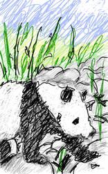 scribble panda by Ccloohoo