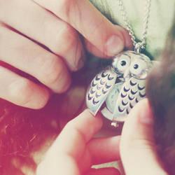 Owl by SuperSzajs