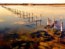 Salt lake by gulgulass