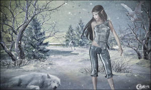 Loup d'hiver by cflonflon