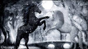 Combat de licornes by cflonflon