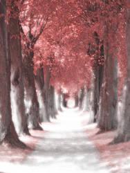 Chemin Rouge by PrincessTia