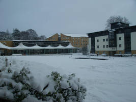 Roehampton London - Snowy Day 2 by Oligarch23