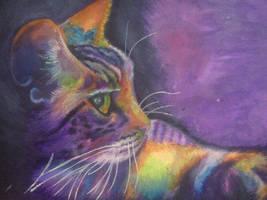 Rainbow kitty by Sparkle489