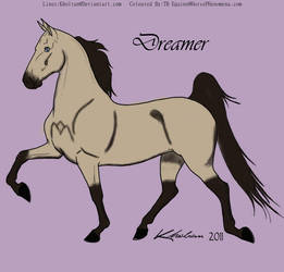 Dreamer by MollyMay335