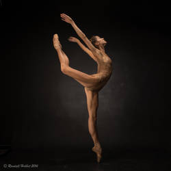 High arabesque by rdhobbet