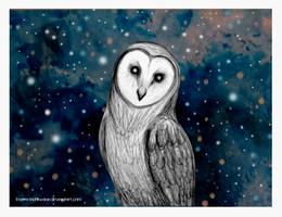 Barn Owl by love-a-lad-insane