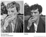 Drawing VS Photo #8 by love-a-lad-insane