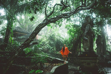 monkey forest, ubud by vampire-zombie