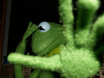 Kermit vs. Paparazzi by Lonecow