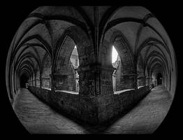 distorted symmetry by brandybuck