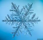 Snowflake by ak87