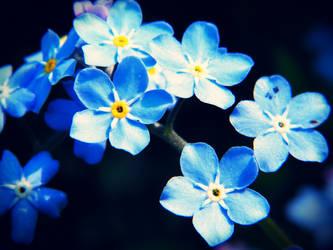 I'm blue by inmymind81