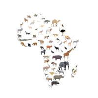 Wild Africa by ZolinStudio