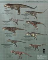 North American Tyrannosaurs v2 by PaleoGuy