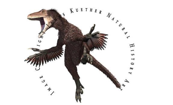 Dakotaraptor by PaleoGuy
