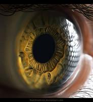 Macro Eye Painting by HadiAlakhras