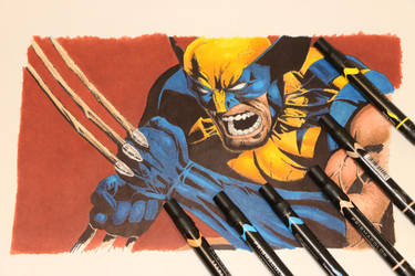 Wolverine Drawing in Ink by kitslam