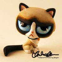 Grumpy Cat custom LPS by thatg33kgirl