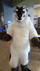 Arctonyx - Full Digitigrade Realistic Fursuit by WeaselsOnEasels