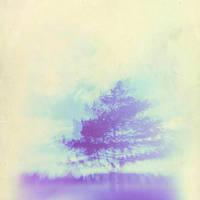 holga 3 by JasonKaiser