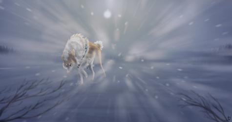 FV | Brave the Storm by jess-hawke