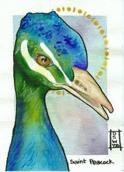 Saint Peacock by DawnstarW
