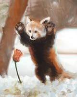 DAILY PAINT : Mister red panda #71 by Dan-zodiac