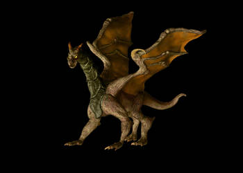 Dragon by allhailinsanity