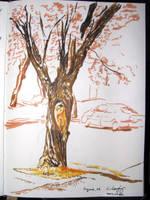 2007-02 Sketchbook: 05 by monking