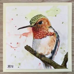 Hummingbird  by marmeline