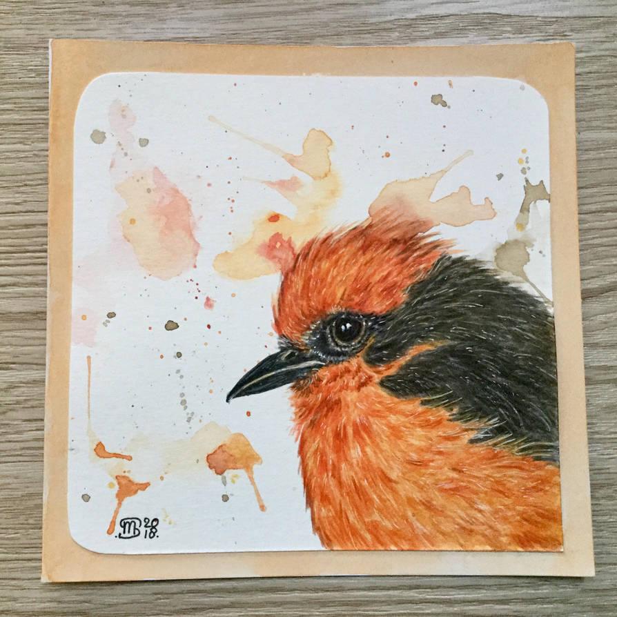 Vermilion flycatcher  by marmeline