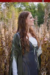 Medieval Tales 37 by Elandria