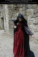 Rievaulx Abbey Ind Red 18 by Elandria