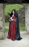 Rievaulx Abbey Ind Red 20 by Elandria