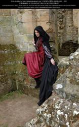 Rievaulx Abbey Ind Red 37 by Elandria