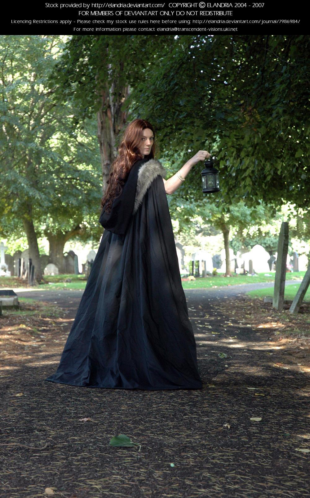 Victorian Ind 4 by Elandria
