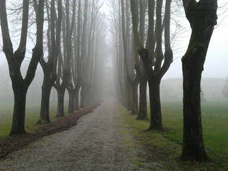 A path in fog ... by shadethechangingman