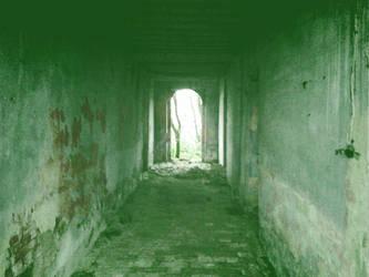 The green corridor of hope by shadethechangingman