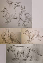 Creature Sketches 2 by eychanchan