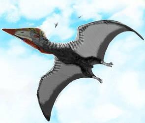 Hatzegopteryx by MrWeaselMan