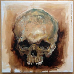 Oil painting skull study by JeffStahl