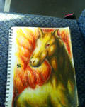 Realistic Rapidash by xprotector10