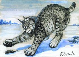 Aceo hunting lynx by Kivuli