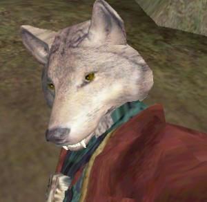 wolfenshun's Profile Picture