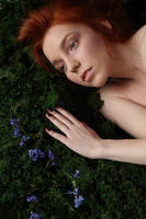 close to nature (2) by TheAutumnLeaves